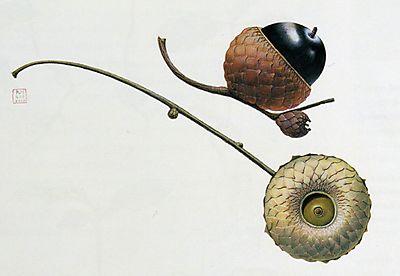 Hagedorn