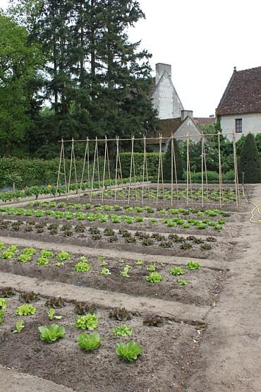 Chenonceau potager garden