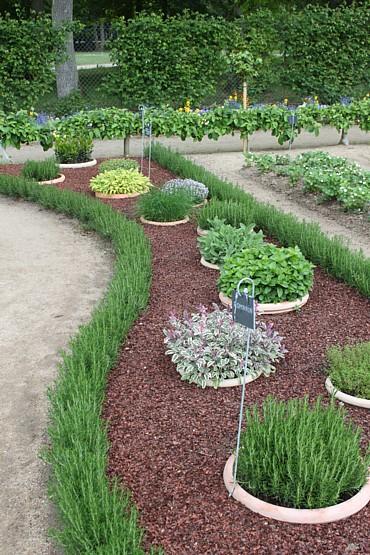 Excellent Sunken Herb Garden Pots 370 x 555 · 120 kB · jpeg
