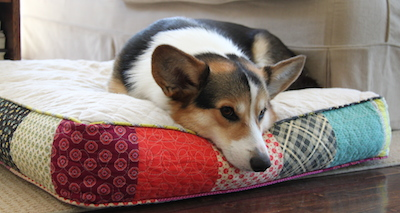 Quilted dog bed 2